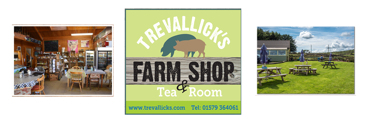 Trevallick's Farm shop & Tea room